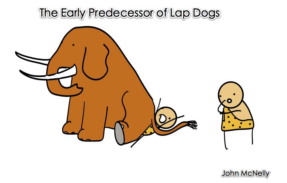 Lap Mammoth
